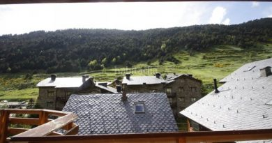 En venta coqueto apartamento situado en pleno Vall d´Incles